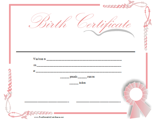 Computer kiddos wiki all about me for Novelty birth certificate template